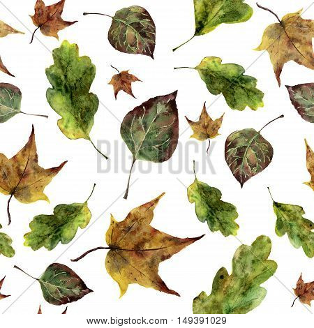 Watercolor fall leaves seamless pattern. Hand painted oak, maple, aspen fall leaves ornament isolated on white background. Botanical illustration for design, print, fabric.