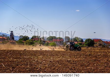 Green tractor ploughing field in summer days