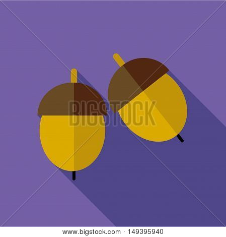 Acorn icon in flat style isolated with long shadow vector illustration