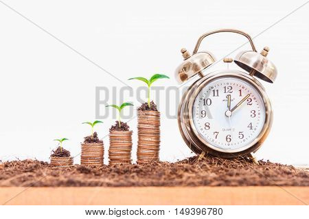 Coins stack and alarm clockfinance concept on white background and selective focus.