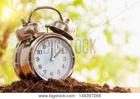 Retro Alarm Clock On Wooden Background With Sun Light,alarm Clock On Wood With Blurry Green Bokeh In