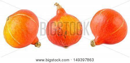 Red Kuri Squash Set Collection Hokkaido Pumpkin Isolated on White