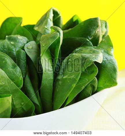 Fresh green organic spinach . Healthy Eating