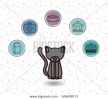 Cat and icon set. Animal pet and nature theme. White and texture background. Vector illustration