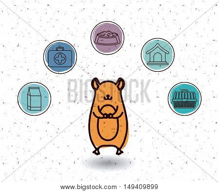 Hamster and icon set. Animal pet and nature theme. White and texture background. Vector illustration