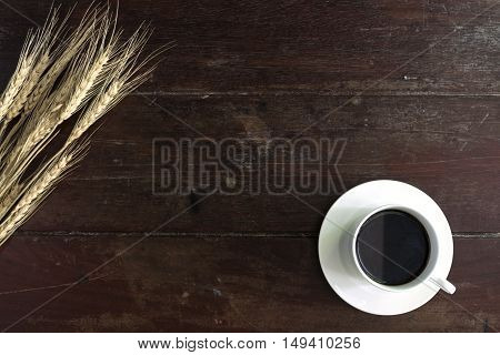 Coffee cup and saucer with wheat on wooden table with copy space