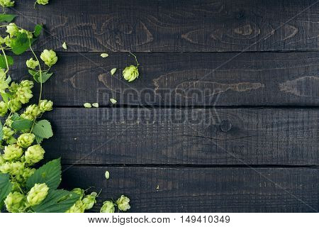 Border From Green Hop Branches On Dark Rustic Wooden Background. Concept Of Beer Production. Mock Up