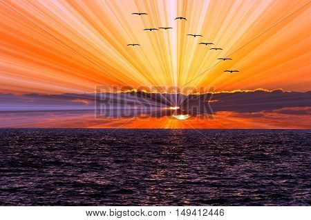 Sunset ocean birds is a flock of seabirds flying along the ocean water withe a sun burst of rays flowing out from behind the clolorful cloud filled sky.