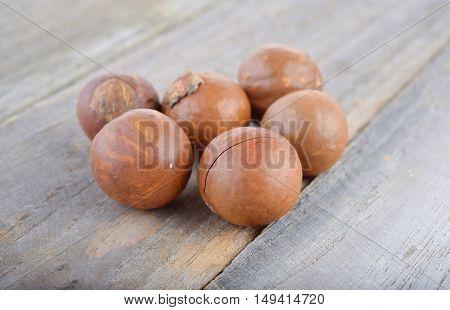 unpeeled dry macadamia nut on wooden table