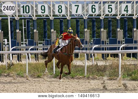 Horse race for the traditional prize Pel in Pyatigorsk,the largest in Russia.