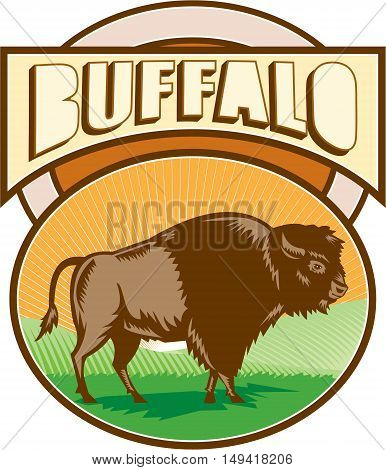 Illustration of an american bison buffalo bull viewed from the side set inside oval shape with sunburst and field in the background and the word Buffalo set inside rectangle shape done in retro woodcut style.