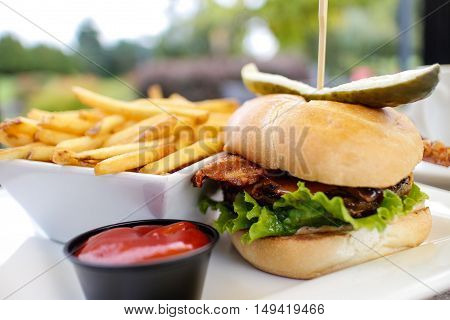 gourmet hamburger with some crispy french fries