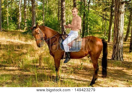 image of a young man in the forest on horseback