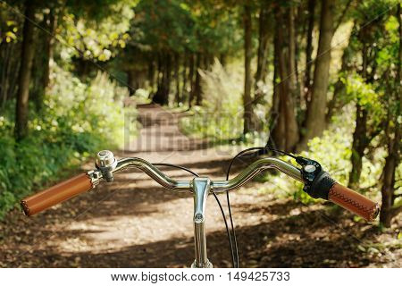 Bike handlbar on the road in the forest