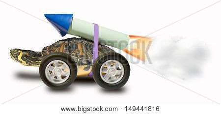 Turtle with a rocket propulsion to go faster