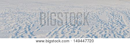 Snow photo background on the frozen sea