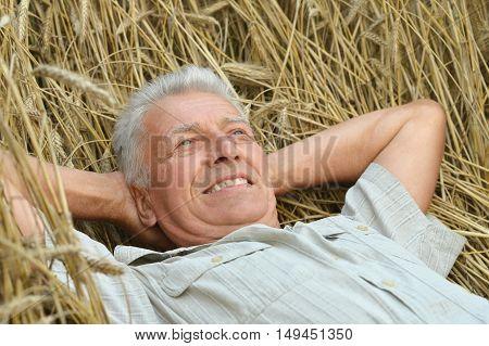 Portrait of a happy senior man in summer field