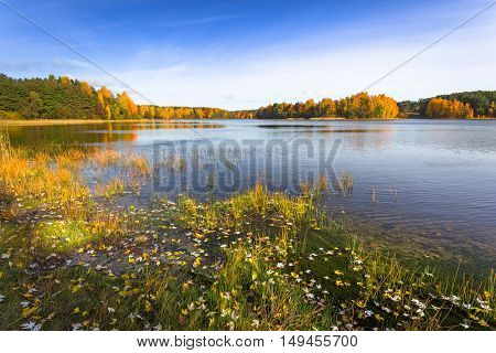 Autumn at the lake in Poland