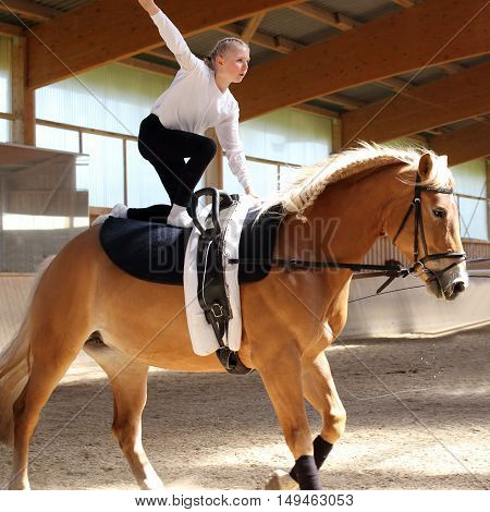 young girl is vaulting on a brown horse indoors