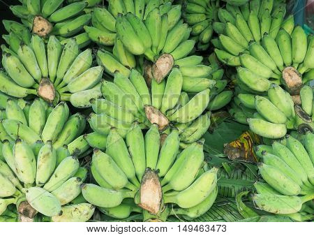 Bunch of ripened green organic bananas at farmers market, Thailand