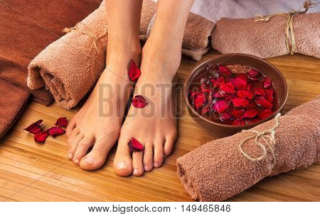 Beautiful female feet spa salon pedicure procedure with petals of red rose flower