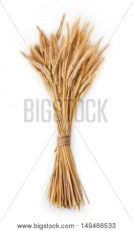 Ripe ears of wheat bunch closeup isolated on white background. Harvest of bread making agricultural business background, natural edible plant. Vertical image