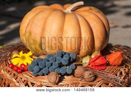 Composition of autumn gifts on a wicker stand