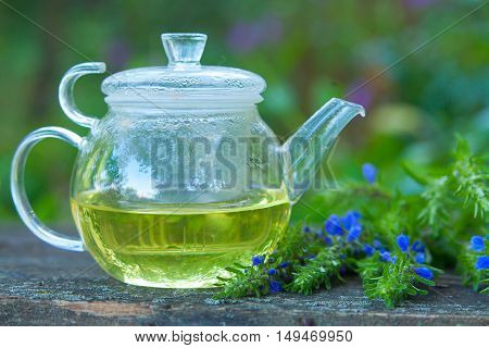 Green Tea In Beautiful Cup