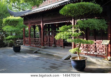 Beautiful chinese garden with gnarled trees and old buildings at sunny day