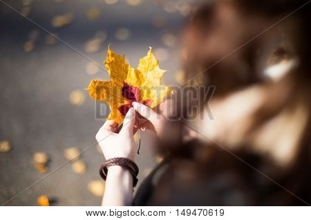 Girl holding autumn leaves close-up on top