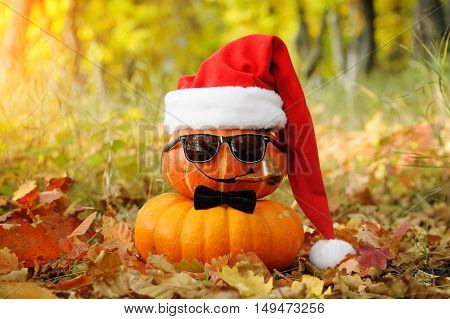 Funny Halloween. Pumpkin In Sunglasses In The Forest.