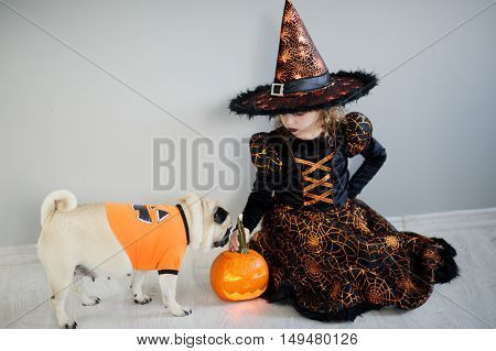 Little girl and her friend - pug are dressed in suits for Halloween. Girl in an image of sorcerer sits on a floor. On a doggie have put on an orange sweater. Nearby there is pumpkin - Halloween symbol