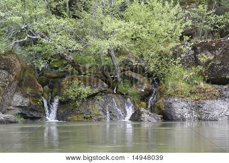 Tranquility On The Rogue River