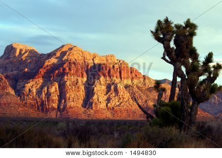 Scenic Red Rock Canyon