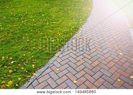 Autumn path with fallen leaves, walk gloomy day, paving slabs, green lawn with sunny hotspot
