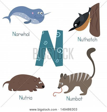 Cute vector zoo alphabet. Funny cartoon animals: narwhal nuthatch nutria numbat.