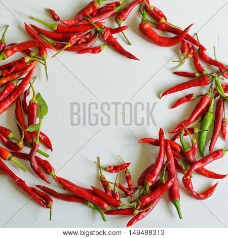 Hot red chili pepper on white painted background copy space