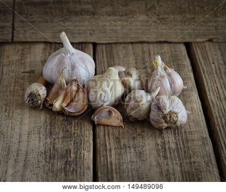 fragrant garlic on a dark wooden background