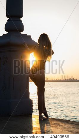 Sexy young woman from the back in black swimsuit looking at sunrise near the sea