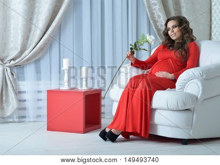 fashion photo of beautiful pregnant woman with long dark hair posing in beautiful  interior