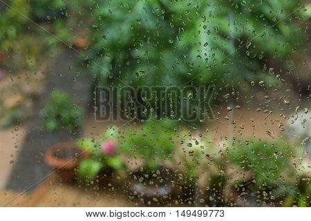 Rain Drops On Mirror Window