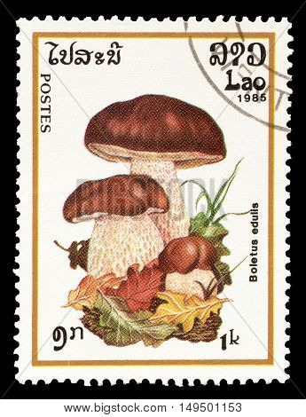 LAOS - CIRCA 1985 : Cancelled postage stamp printed by Laos, that shows Boletus Edulis mushroom.