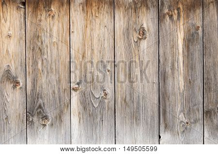 Old gray grunge wooden texture as background
