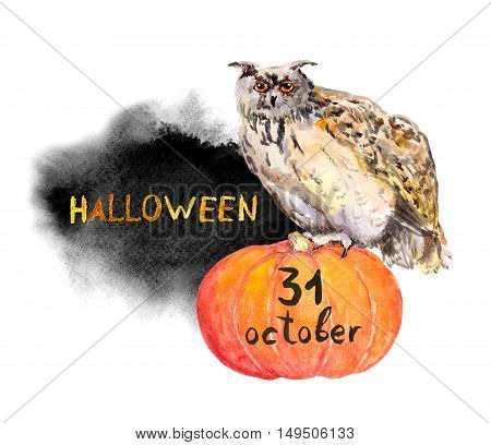 Owl on pumpkin. Halloween watercolor for card or party inviatation