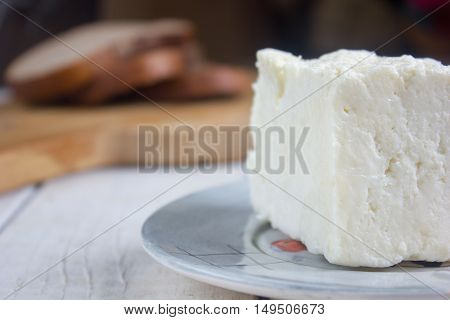 Traditional indian cheese panneer prepared form fresh milk on plate.