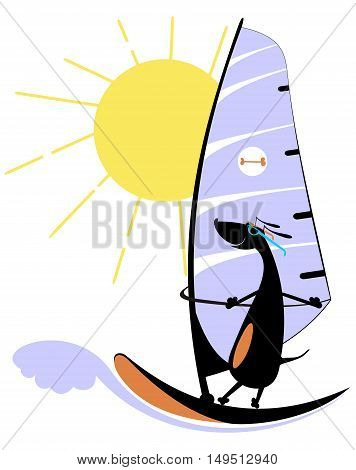 Windsurfing. Comic dog goes in for windsurfing