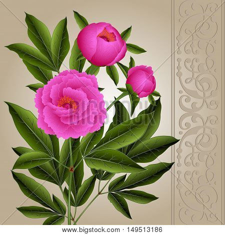 Illustration of greeting or invitation card template with peony flowers and ornamental border