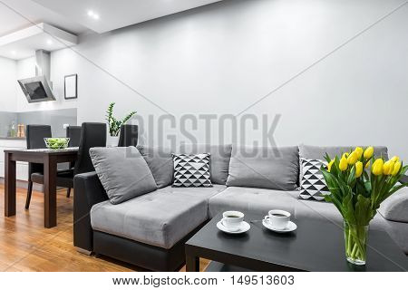 Home With Open Layout Idea