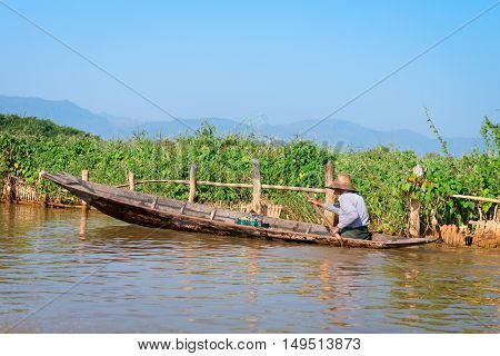 INLE LAKE MYANMAR - 07 JAN 2014: Local man in a traditional canoe rows past floating gardens on Inle Lake in Myanmar.