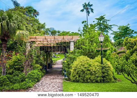 Lush green foliage along this walkway in Queens Park Hamilton Bermuda.